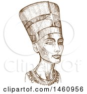 Sketch Of Ancient Egyptian Nefertiti