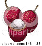 Clipart Of Sketched Lychee Fruits Royalty Free Vector Illustration by Vector Tradition SM