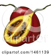 Clipart Of A Sketched Feijoa Royalty Free Vector Illustration