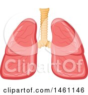 Pair Of Lungs