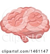 Clipart Of A Brain Royalty Free Vector Illustration by Vector Tradition SM