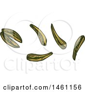 Clipart Of Sketched Cumin Seeds Royalty Free Vector Illustration