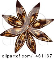 Clipart Of A Sketched Star Anise Royalty Free Vector Illustration