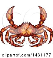 Clipart Of A Sketched Crab Royalty Free Vector Illustration by Vector Tradition SM