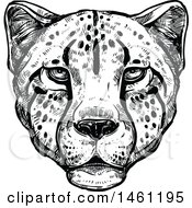 Clipart Of A Sketched Cheetah Face Royalty Free Vector Illustration by Vector Tradition SM