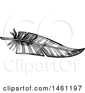 Clipart Of A Sketched Feather Royalty Free Vector Illustration