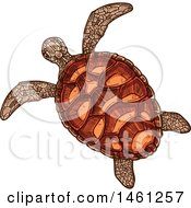 Clipart Of A Sketched Sea Turtle Royalty Free Vector Illustration