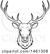 Black And White Elk
