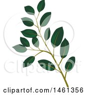 Clipart Of A Green Magnolia Leaf Eucalyptus Branch Royalty Free Vector Illustration