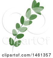 Clipart Of A Green Eucalyptus Branch Royalty Free Vector Illustration