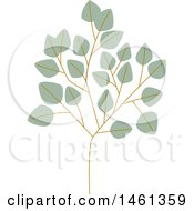Clipart Of A Silver Dollar Eucalyptus Branch Royalty Free Vector Illustration