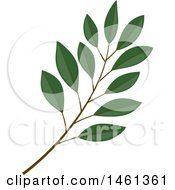 Clipart Of A Green Salal Branch Royalty Free Vector Illustration
