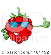 Clipart Of A Raspberry Mascot Character Wearing Sunglasses And Giving A Thumb Up Royalty Free Vector Illustration by Hit Toon