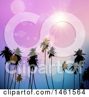 Purple Sunset Sky Over Tropical Palm Trees