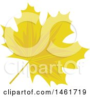 Yellow Autumn Maple Leaf