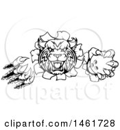 Poster, Art Print Of Vicious Wildcat Mascot Slashing Through A Wall And Holding A Bowling Ball