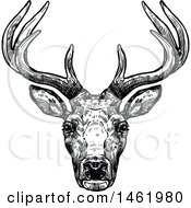 Clipart Of A Sketched Black And White Reindeer Head Royalty Free Vector Illustration by Vector Tradition SM