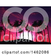 3d Pink And Purple Sunset Sky And Palm Trees