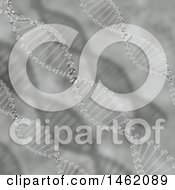 Clipart Of A 3d Grayscale Double Helix Dna Strand Background Royalty Free Illustration