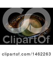 Clipart Of A Crocodile Eye Royalty Free Vector Illustration by dero