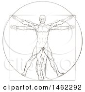 Clipart Of A Sketch Of Leonard Da Vincis Vitruvian Man Royalty Free Vector Illustration