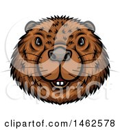 Clipart Of A Beaver Mascot Face Royalty Free Vector Illustration