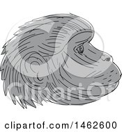 Grayscale Gelada Monkey Face In Profile In Drawing Sketch Style