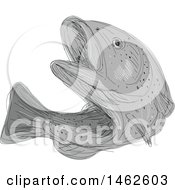 Grayscale Cutthroat Trout Fish In Drawing Sketch Style