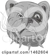 Grayscale Bulldog Face Smoking A Pipe In Drawing Sketch Style