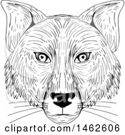 Clipart Of A Black And White Fox Face In Drawing Sketch Style Royalty Free Vector Illustration by patrimonio