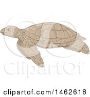 Swimming Hawksbill Sea Turtle In Profile In Drawing Sketch Style