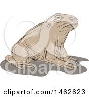 Clipart Of A Resting Toad In Drawing Sketch Style Royalty Free Vector Illustration