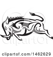 Tribal Boar Charging In Black And White