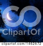 3d Shining Crescent Moon In A Dark Night Sky With Silhouetted Tree Branches