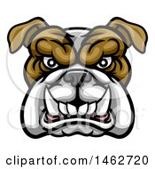 Clipart Of A Growling Aggressive Bulldog Mascot Face Royalty Free Vector Illustration