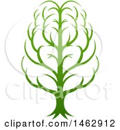 Gradient Green Brain Tree