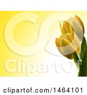 Yellow Background With 3d Tulips