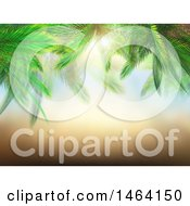 Poster, Art Print Of 3d Border Of Palm Branches Against A Sunny Sky