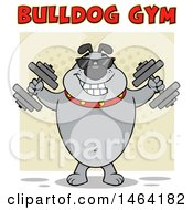 Gray Bulldog Working Out With Dumbbells Under Text