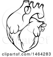 Clipart Of A Black And White Human Heart Royalty Free Vector Illustration by Vector Tradition SM