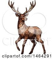 Clipart Of A Sketched Deer Royalty Free Vector Illustration by Vector Tradition SM