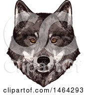 Clipart Of A Sketched Wolf Face Royalty Free Vector Illustration