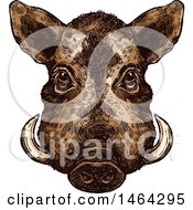 Clipart Of A Sketched Boar Royalty Free Vector Illustration