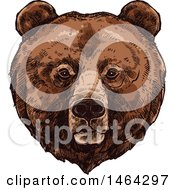 Clipart Of A Sketched Bear Royalty Free Vector Illustration by Vector Tradition SM