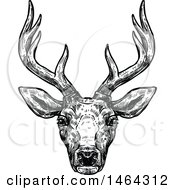 Sketched Black And White Deer