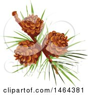 Clipart Of Pinecones Royalty Free Vector Illustration