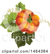 Clipart Of A Pumpkin And Leaves Royalty Free Vector Illustration