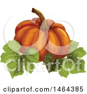 Clipart Of A Pumpkin And Leaves Royalty Free Vector Illustration by Vector Tradition SM