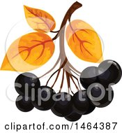 Clipart Of Leaves And Black Currants Royalty Free Vector Illustration by Vector Tradition SM