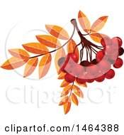Clipart Of Leaves And Red Currants Royalty Free Vector Illustration